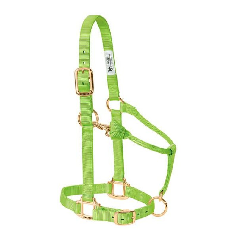 Original Adjustable Chin and Throat Snap Halter; COB Lime green