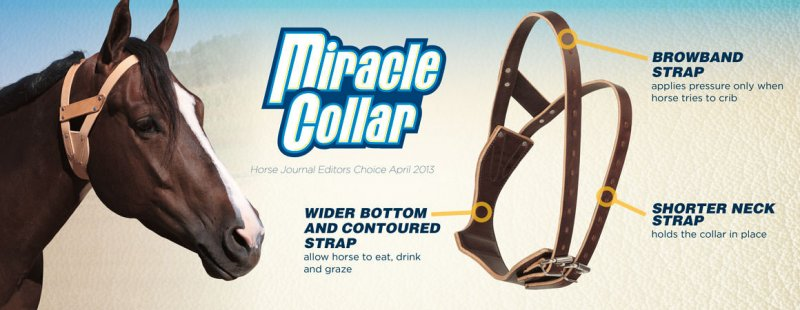 Miracle Collar - Stop Cribbing Now